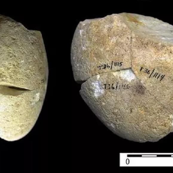 أحدهم قرب حيفا صنع هذا الحجر ليطحن طعامه قبل 350 ألف عام