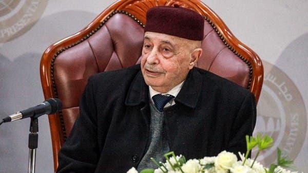 """ليبيا.. عقيلة صالح في القاهرة لدعم """"التعاون"""" بين البلدين"""