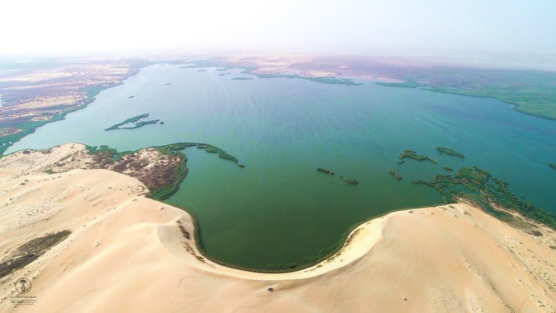 سعودی عرب , بحیرہ اصفر