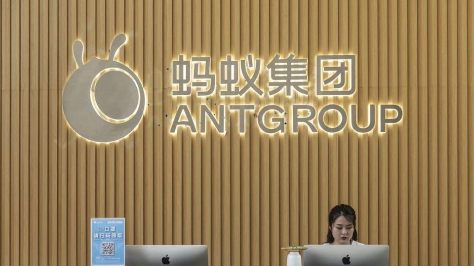 الصين تدرس مطالبة النملة ببيع الاستثمارات المالية