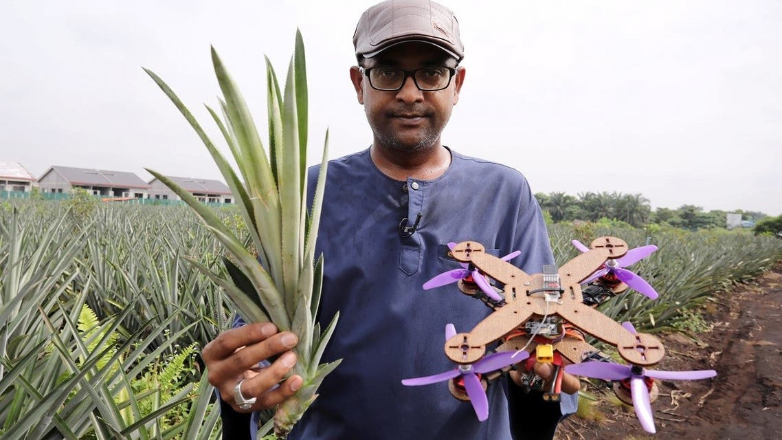 University Putra Malaysia professor Mohamed Thariq holds pineapple leaves and a drone partially made with pineapple stems, in Jenjarom, Malaysia December 12, 2020.  (Reuters)