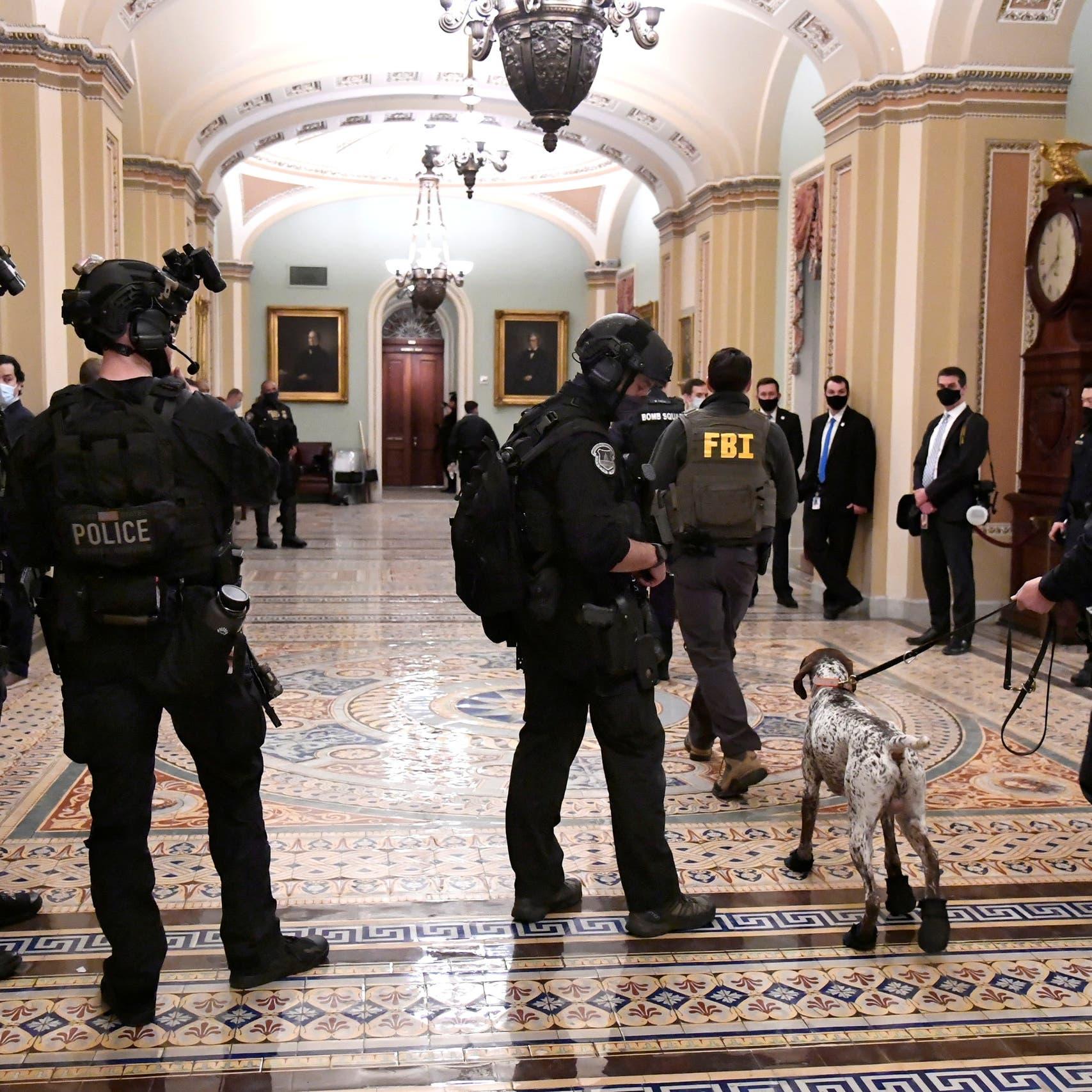 """تفاصيل جديدة عن """"قنبلتي"""" الكونغرس.. ورفع المكافأة مجدداً"""