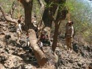 الارياني: الحوثيون يعدمون مدنيين من الحيمة في تعز