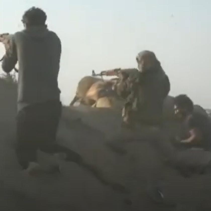 مقتل 5 حوثيينوإصابة آخرين في إحباط محاولة تسلل جنوب الحديدة