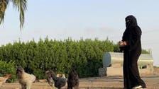 سعودی عرب میں مویشی پالنے والی گریجویٹ خاتون سے ملیے