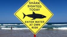 Surfer killed in shark attack on Australia's east coast