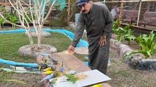 بزرگ سعودی شہری کا انوکھا مشغلہ، گھر کو پرندوں کی پناہ گاہ بنا لیا