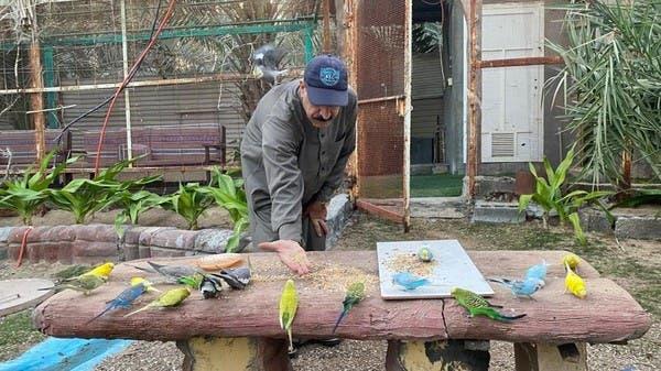 """قصة سبعيني يحول منزله إلى """"محمية طيور"""" شرق السعودية"""