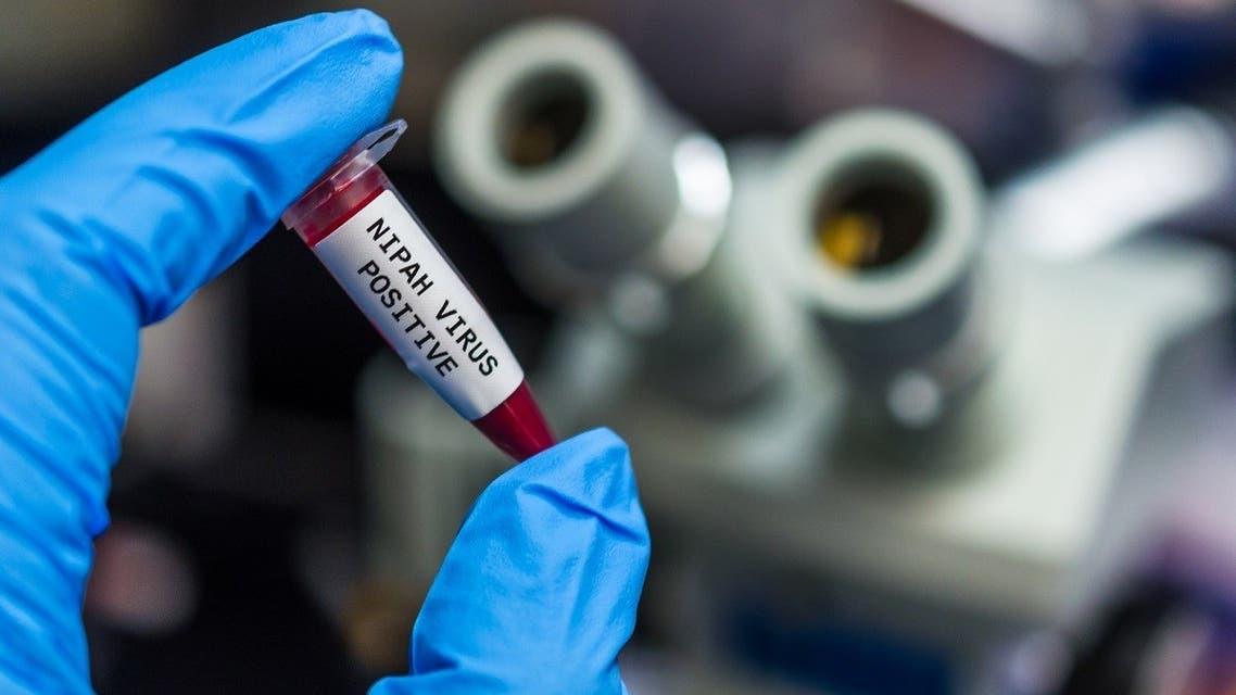 nipah virus (iStock)