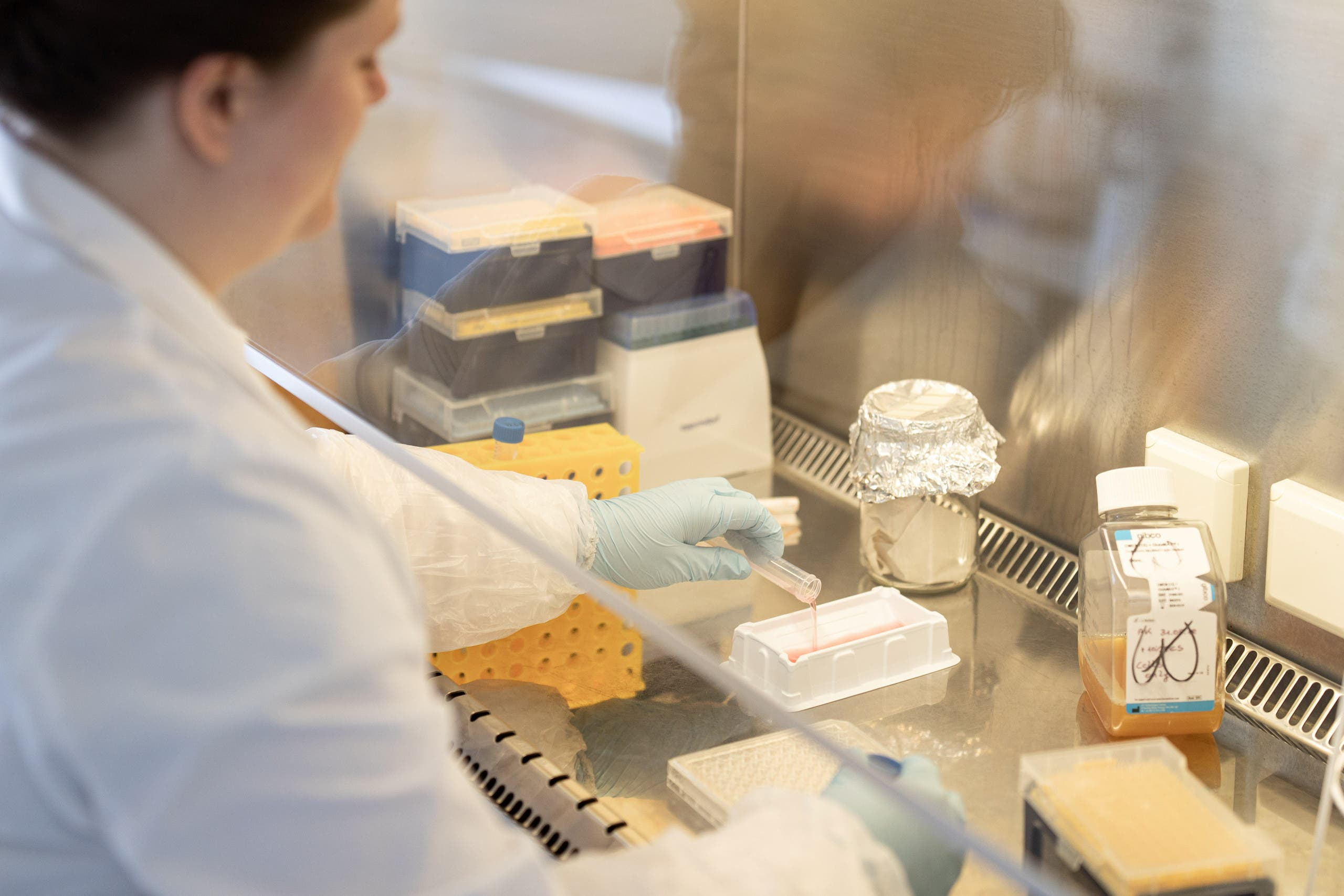 A scientist is seen in the Themis Bioscience laboratory in Vienna, Austria, in this undated handout photo. (Reuters)