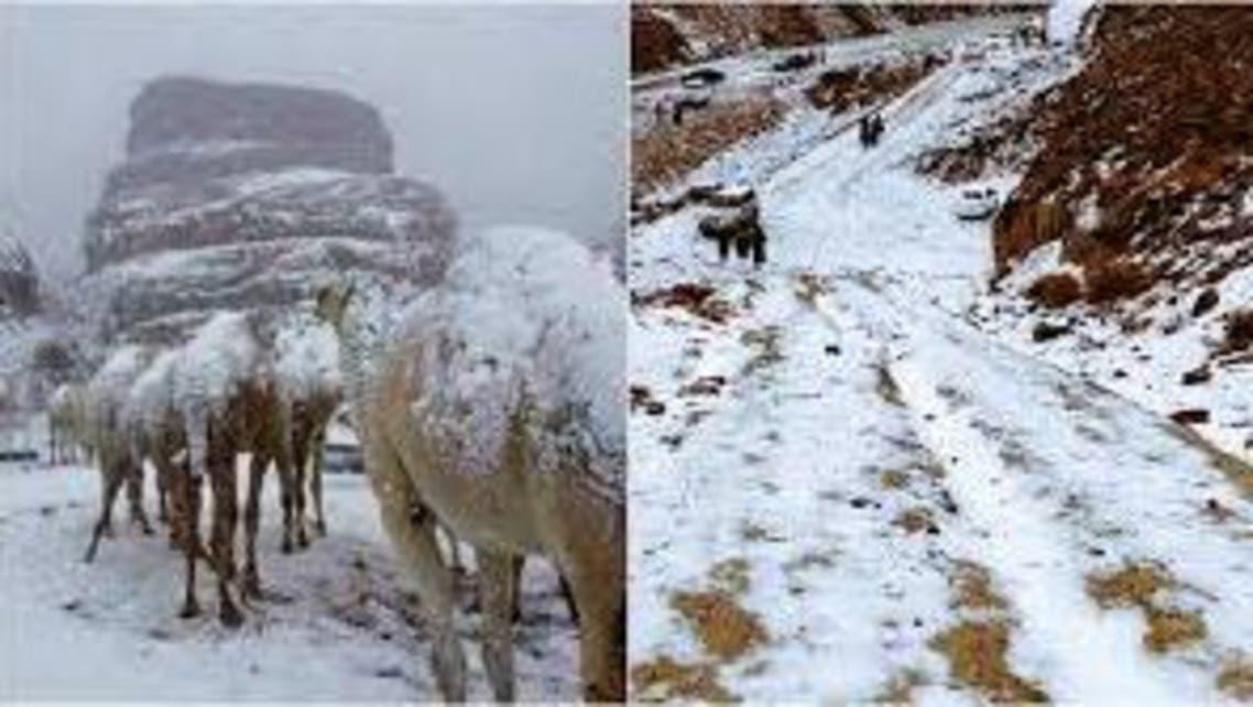 saudi arab snow