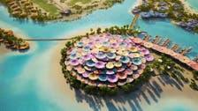 سعودی ولی عہد کانیا منصوبہ؛ بحیرہ احمرکے جزیرے میں لگژری''کورل بلوم'' کا افتتاح