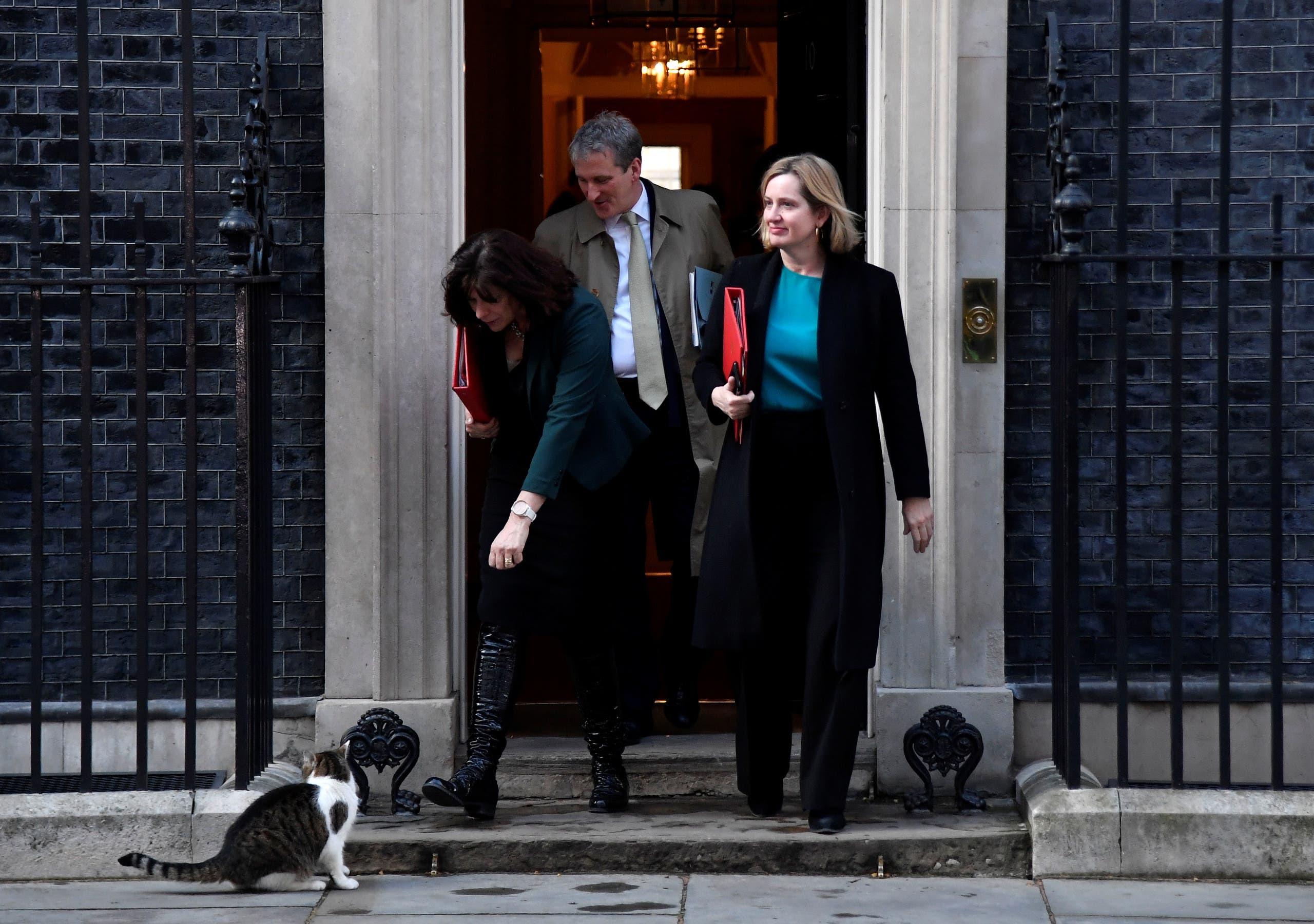لاري أمام 10 داونينغ ستريت بينما يخرج عدد من الوزراء البريطانيين من المقر