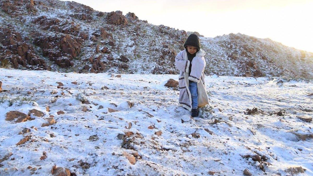 22 درجة تحت الصفر.. توقعات بتجمد جبل اللوز الشهير بالسعودية