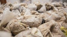 بلغاريا.. ضبط شحنة مخدرات في سفينة نقل بضائع إيرانية