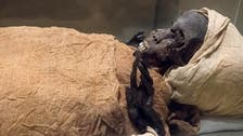 Egypt autopsy offers new clues 3,600 years after murder of a pharaoh