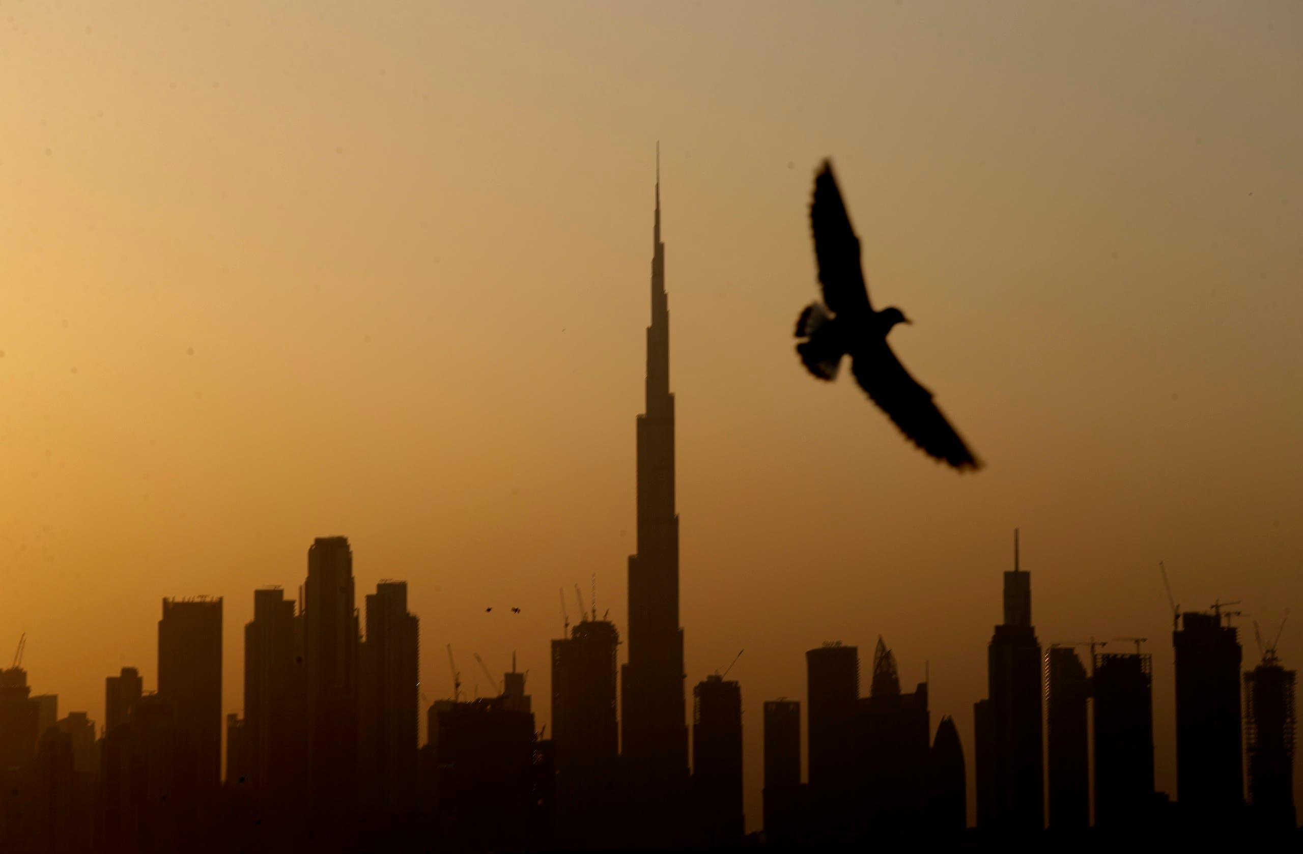 A seagull flies pass the view of city skyline and the world tallest tower, Burj Khalifa, in Dubai, United Arab Emirates. (File photo: AP)