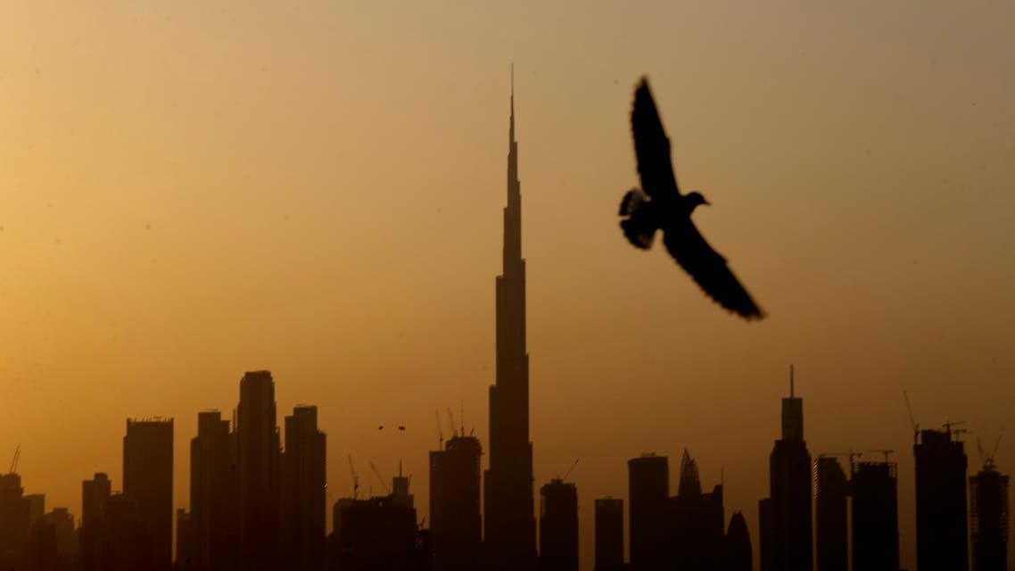 A seagull flies pass the view of city skyline and the world tallest tower, Burj Khalifa, in Dubai, United Arab Emirates. (AP)