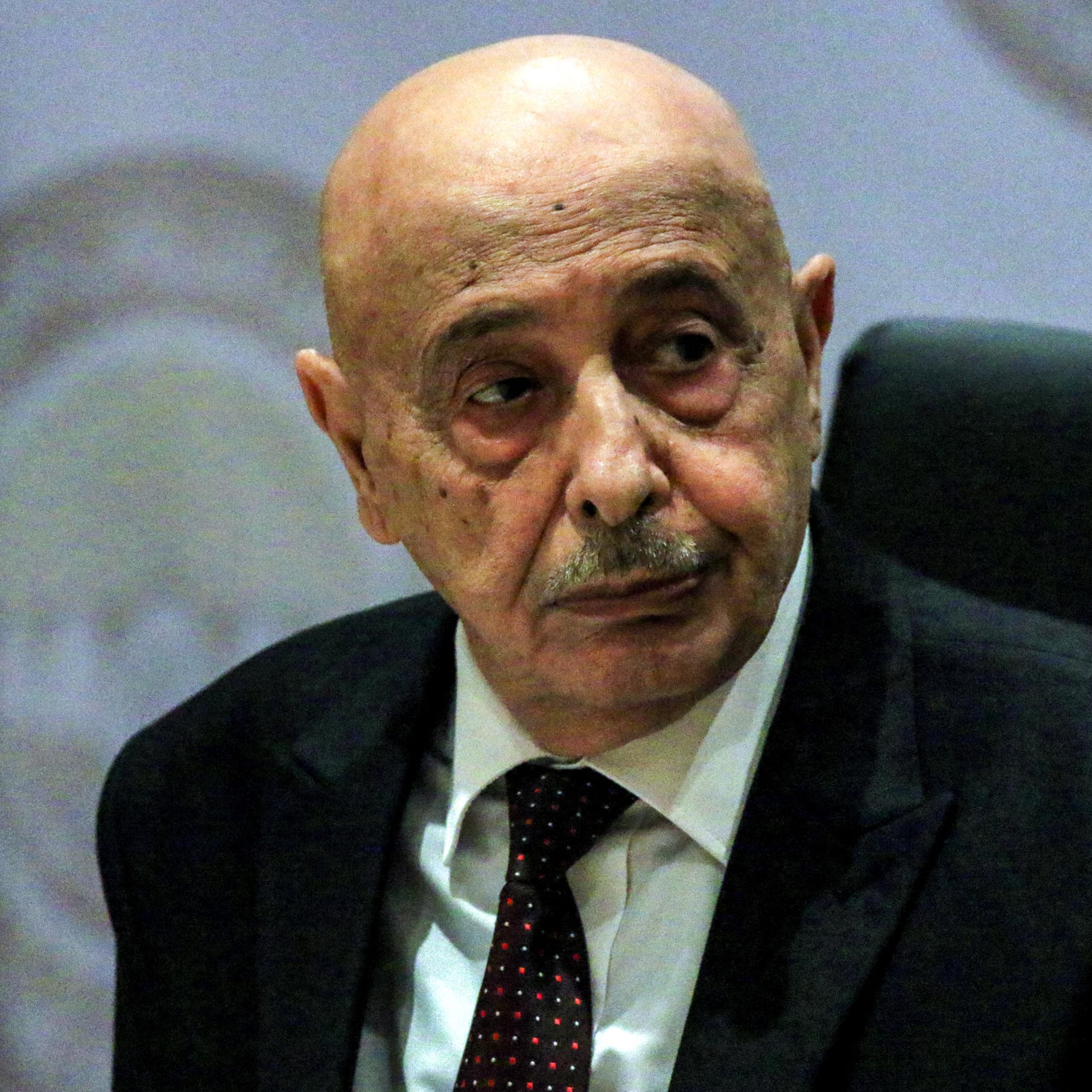 """ليبيا.. صالح في مصر لدعم """"التعاون"""" بين البلدين"""