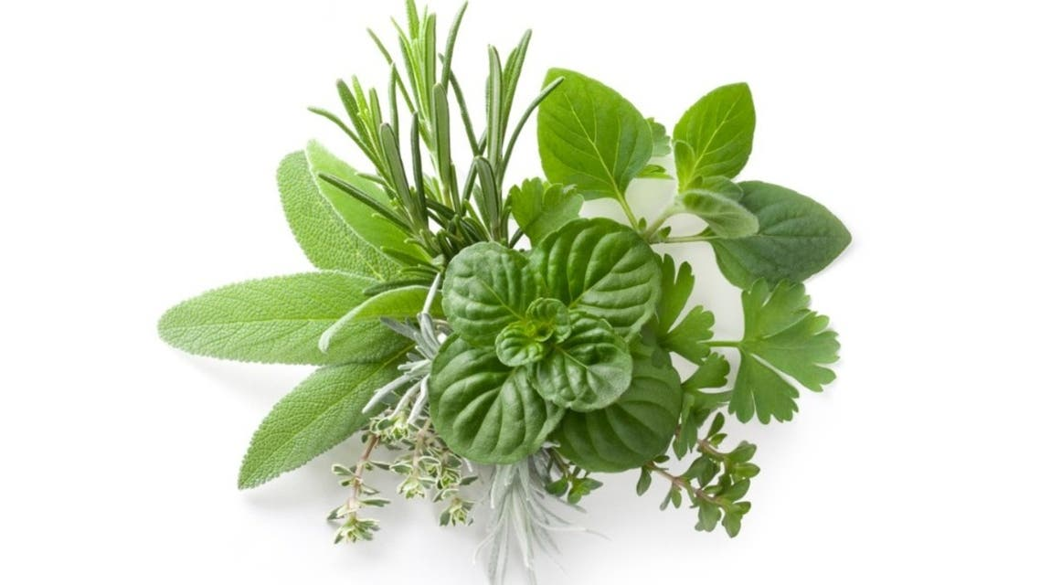 Collection of fresh herbs stock photo Collection of fresh herbs. Rosemary, sage, mint, savory, thyme, everlasting, parsley. To see more Leaves images click on the link below:
