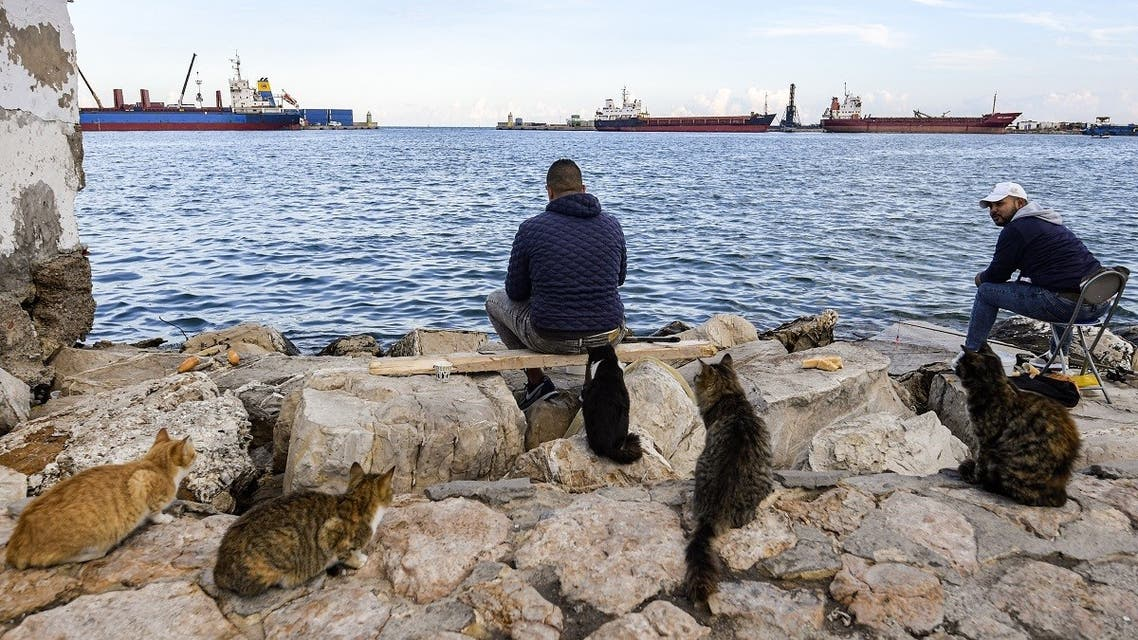 Cats sit in waiting behind men casting their lines while fishing at the port of Sousse, about 140 kilometres south of Tunisia's capital. (AFP)