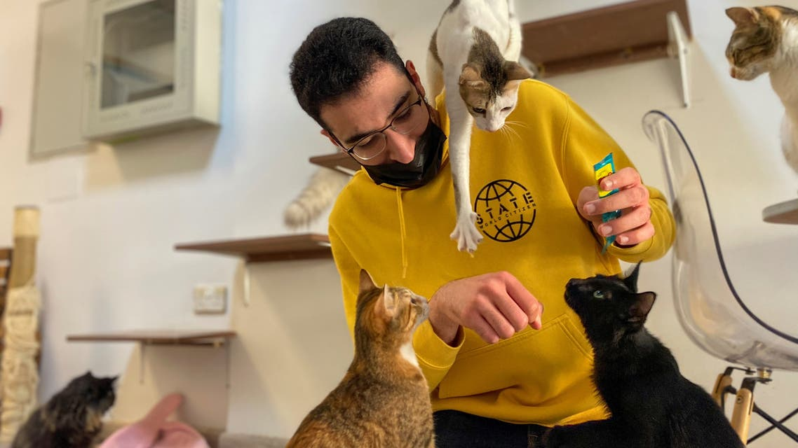 A man plays with the cats at the Ailuromania Cat Cafe, where customers can relax among purring felines or adopt a stray cat in Dubai, United Arab Emirates February 25, 2021. Picture taken February 25, 2021. (Reuters)