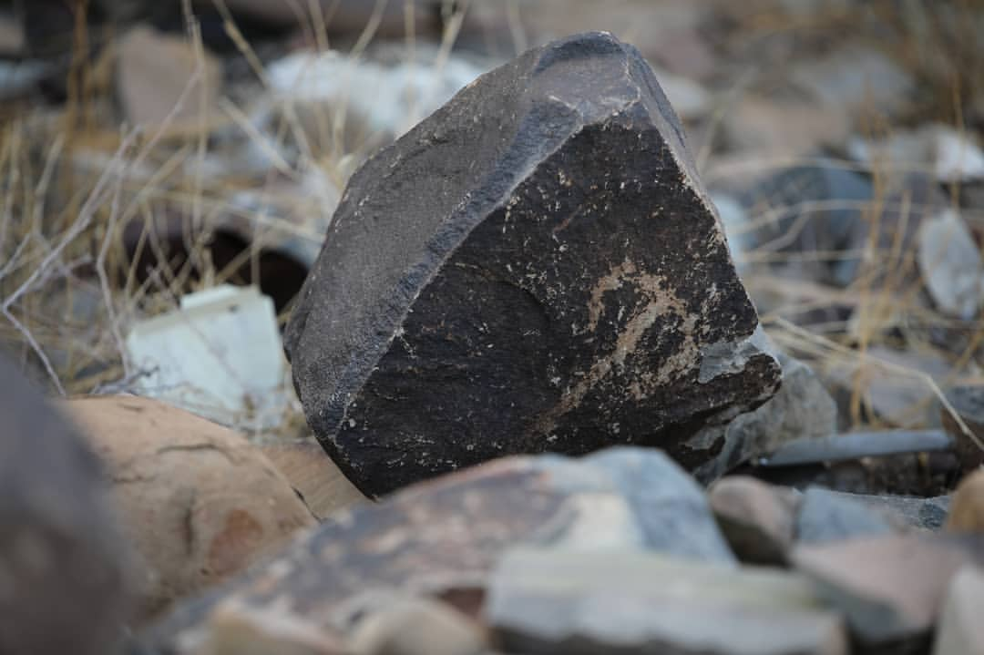 صخور تحمل عدداً من النقوش