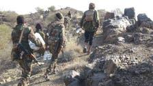 الجيش اليمني يحقق انتصارات جديدة في تعز
