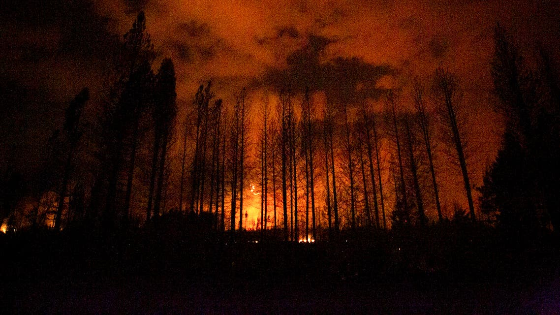 Flames from a fire work their way through a forested area in Las Golondrinas, Chubut province, Argentina, Wednesday, March 10, 2021. (AP Photo/Matias Garay )