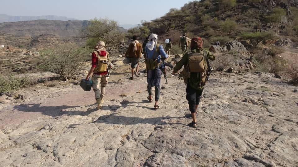 حوثیوں نے تعز میں الکدحہ کے مقام پر گولہ باری کی