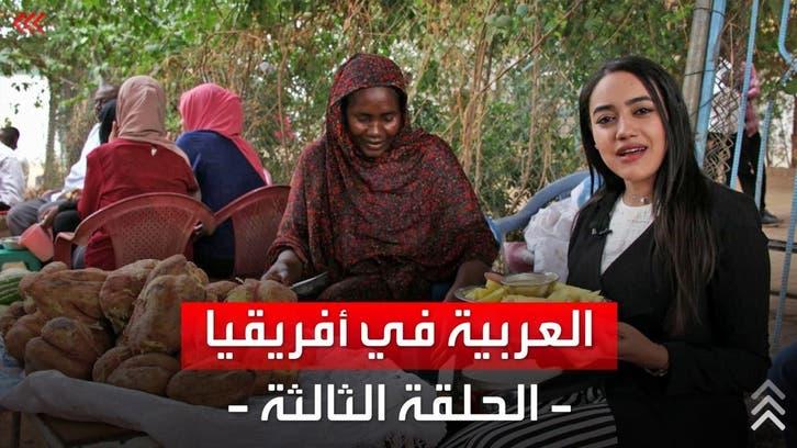 العربية في أفريقيا| رحلة السودان.. من حلفا إلى القضارف