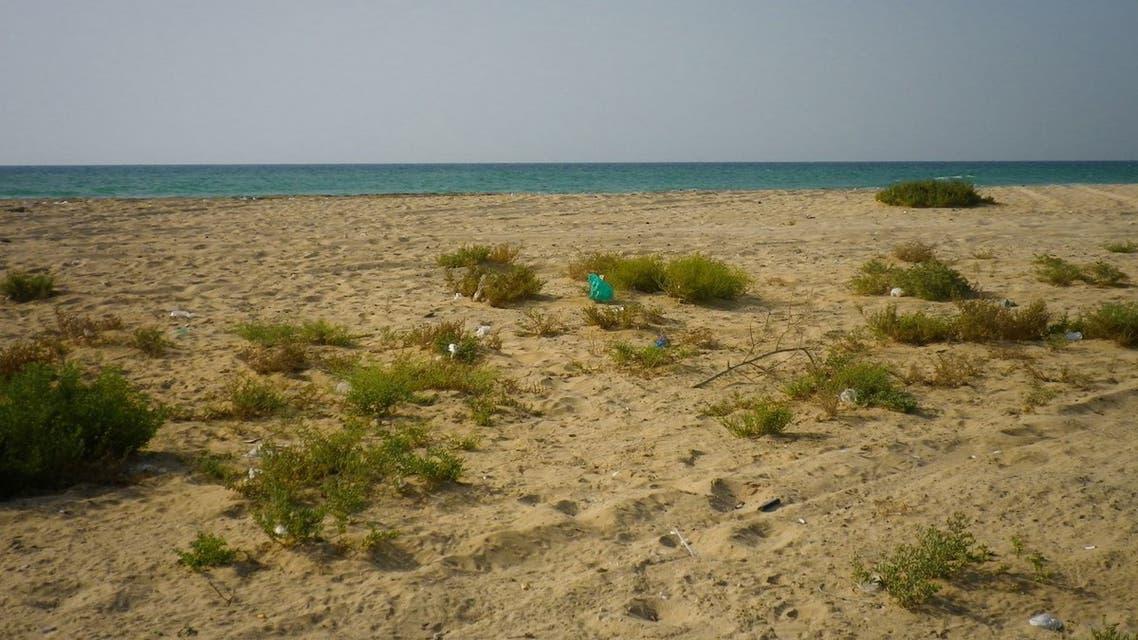 General view of a beach in Umm al Quwain, UAE. (Sam Nabi via Flickr)