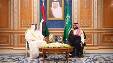 'سرسبز مشرق وسطی منصوبے' پر شہزادہ محمد کا اماراتی ولی عھد سے تبادلہ خیال