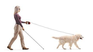 كلب يورّط أوبر بمبلغ خيالي.. ماذا حصل مع كفيفة؟