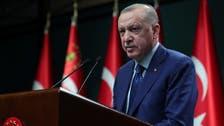 Erdogan says Turkey is working for resolution of Ukraine-Russia tensions