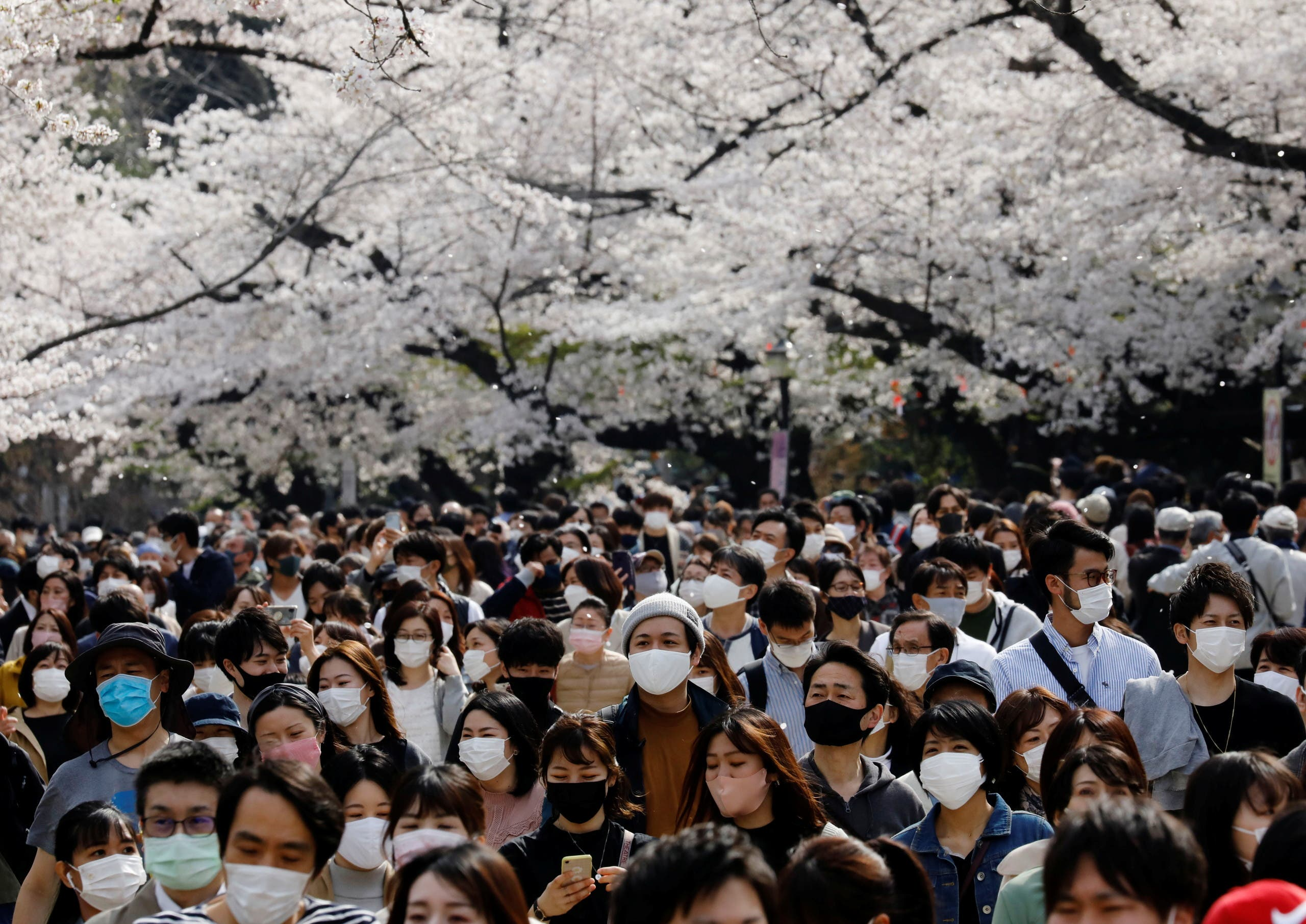 Visitors wearing protective face masks amid the coronavirus disease (COVID-19) pandemic, walk underneath blooming cherry blossoms at Ueno Park in Tokyo, Japan, March 27, 2021. (File photo: Reuters)