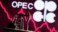 OPEC raises 2021 oil demand growth forecast on hopes COVID-19 impact subsides