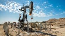 وثيقة: البحرين تبدأ حفر آبار في حقل نفط صخري جديد أواخر 2022