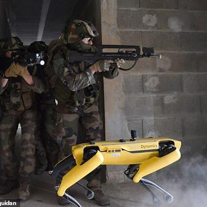 فرنسا تستخدم كلابا روبوتية في سيناريوهات تدريب قتالية مستقبلية