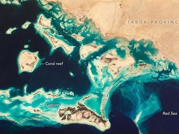 """"""" ناسا"""" تستعرض صوراخاصة للجزر السعوديةفي الساحل الشمالي الغربي"""