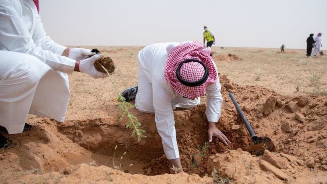 A campaign to afforest the King Abdulaziz Royal Reserve in Saudi Arabia was launched, planting 100,000 trees in its first phase, in line with the Kingdom's Green Initiative. (Supplied)