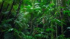مفاجأة صادمة.. 3% فقط من أراضي العالم سليمة بيئياً