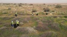 Saudi Arabia arrests environmental violators for cutting down trees