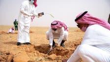 سعودی عرب: شاہ عبدالعزیز ریزرو میں ایک لاکھ پودوں کی شجر کاری مہم شروع