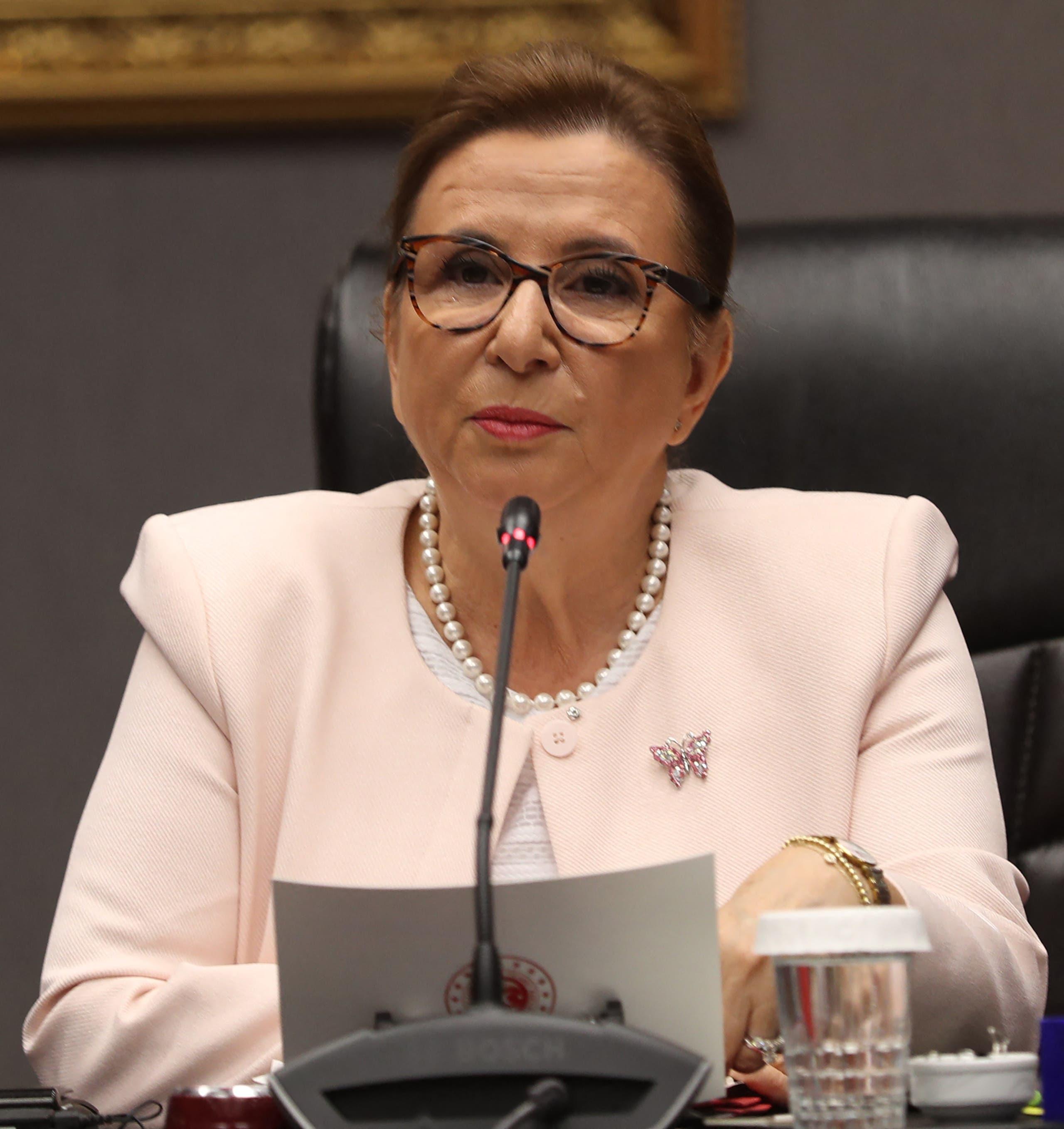 وزيرة التجارة التركية روهسار بيكان(أرشيفية- فرانس برس)