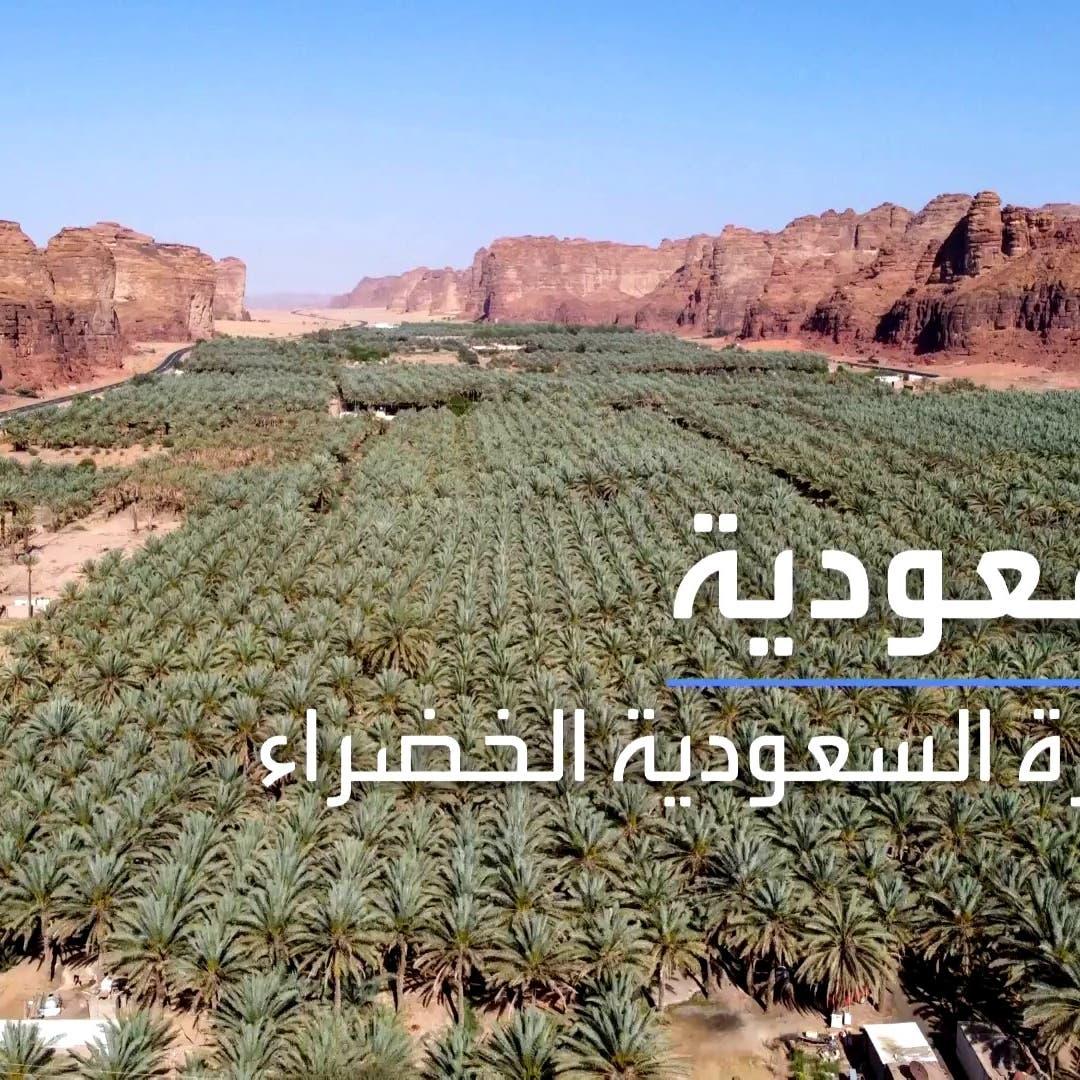 أبرز ملامح مبادرتي السعودية الخضراءوالشرق الأوسط الأخضر