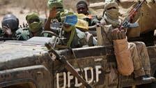 حركة التمرد: قاعدتنا شمال تشاد تعرضت لغارات جوية مكثفة