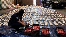 لبنان کی زرعی مصنوعات پر پابندی سے متعلق سعودی فیصلے کی تائید کرتے ہیں : امارات