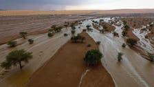 سعودی عرب کے صحرا میں بارشوں اور ژالہ باری کے دنیا میں چرچے