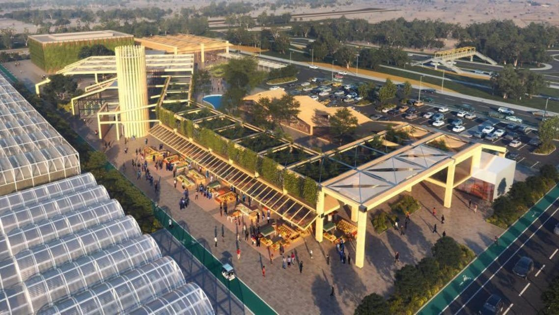 Dubai will build a new business park to host specialized agricultural firms as the Middle East's business hub pushes for food security. (Twitter)